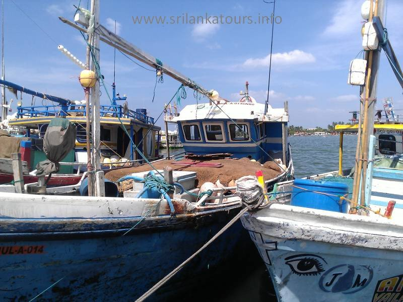 Negombo Harbor