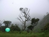 Horton-plains-national-park-view